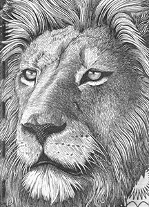Prill Vieceli Cremers - Money