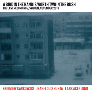 Zbigniew Karkowski - A Bird In The Hand Is Worth Two In The Bush - The Last Recordings, Sweden, November 2013 (2 CD)