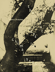 Leonor Antunes - The last days in Chimalistac