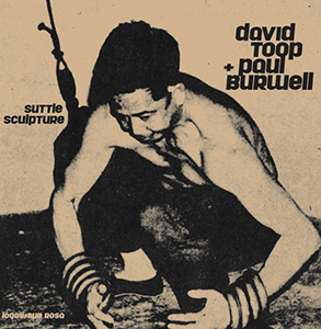 David Toop - Suttle Sculpture (vinyl LP)