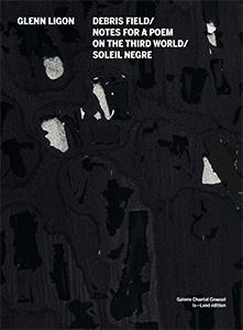 Glenn Ligon - Debris Field / Notes for a Poem on the Third World / Soleil Nègre