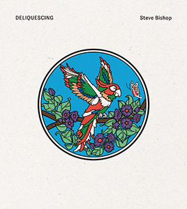 Steve Bishop - Deliquescing