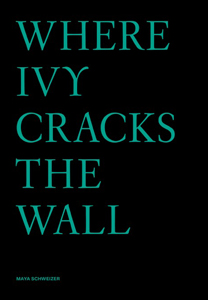 Maya Schweizer - Where Ivy cracks the wall