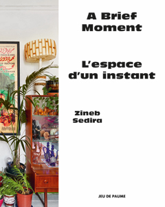 Zineb Sedira - A Brief Moment