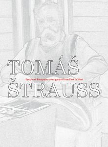 Tomáš Štrauss - Beyond the Great Divide - Essays on European avant gardes from East to West