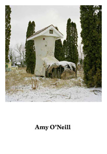 Amy O\'Neill - Suburban Imagination