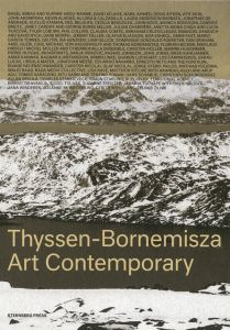 Thyssen-Bornemisza Art Contemporary - The Commissions Book
